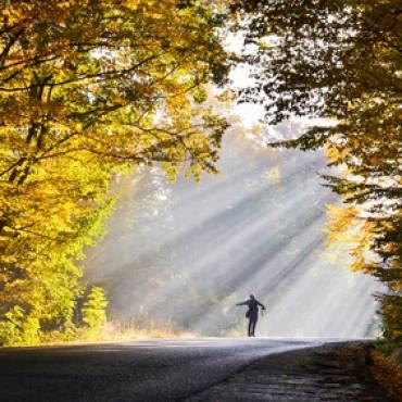Libertad Financiera: cómo adelantar la jubilación